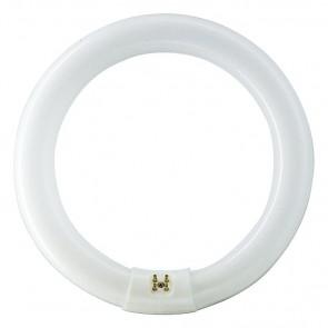 lampe fluorescente TL-E, G10q, blanc neutre, 9.000 Std., 40W